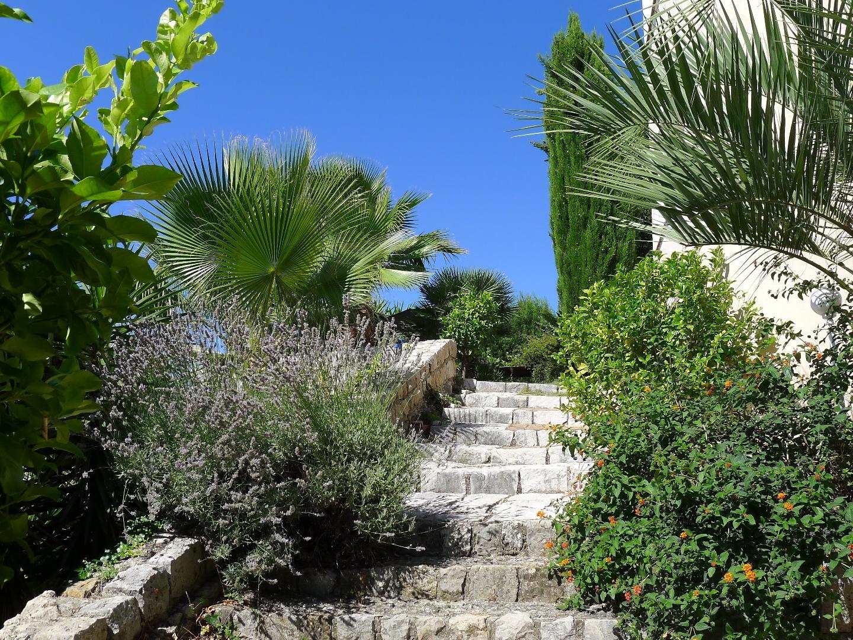 Wege durch den GartenJPG