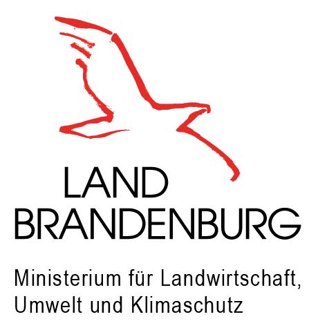 Logo MLUK png